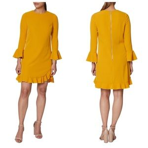 Betsy Johnson Midi Ruffle Dress 4